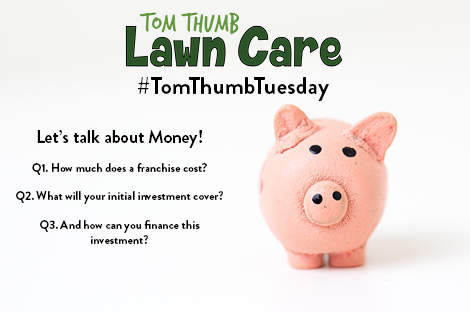 TomThumbTuesday Topics